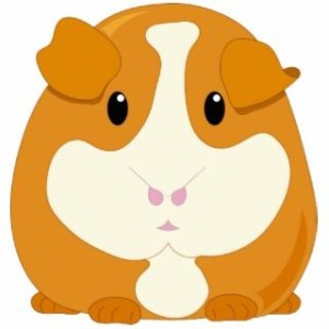 162790161_cute-cartoon-ginger-brown-guinea-pig-photo-sculptures