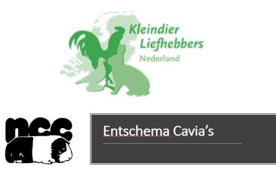 Entschema bij Cavia's i.v.m. Kleindier Liefhebbers Nederland (KLN) bericht in Kleindier Magazine (KM)