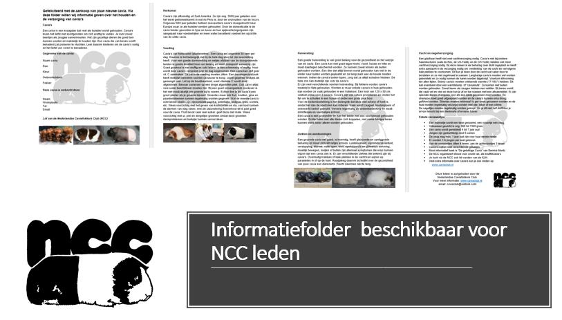 Informatiefolder beschikbaar voor NCC leden t.b.v. nieuwe cavia eigenaren/liefhebbers.