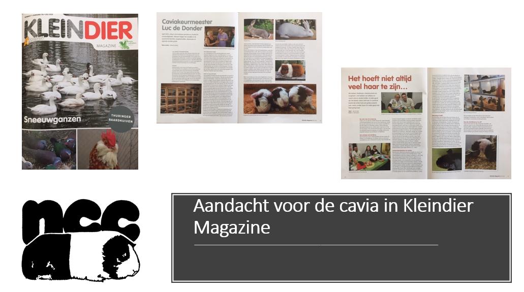 Aandacht voor de cavia in Kleindier Magazine