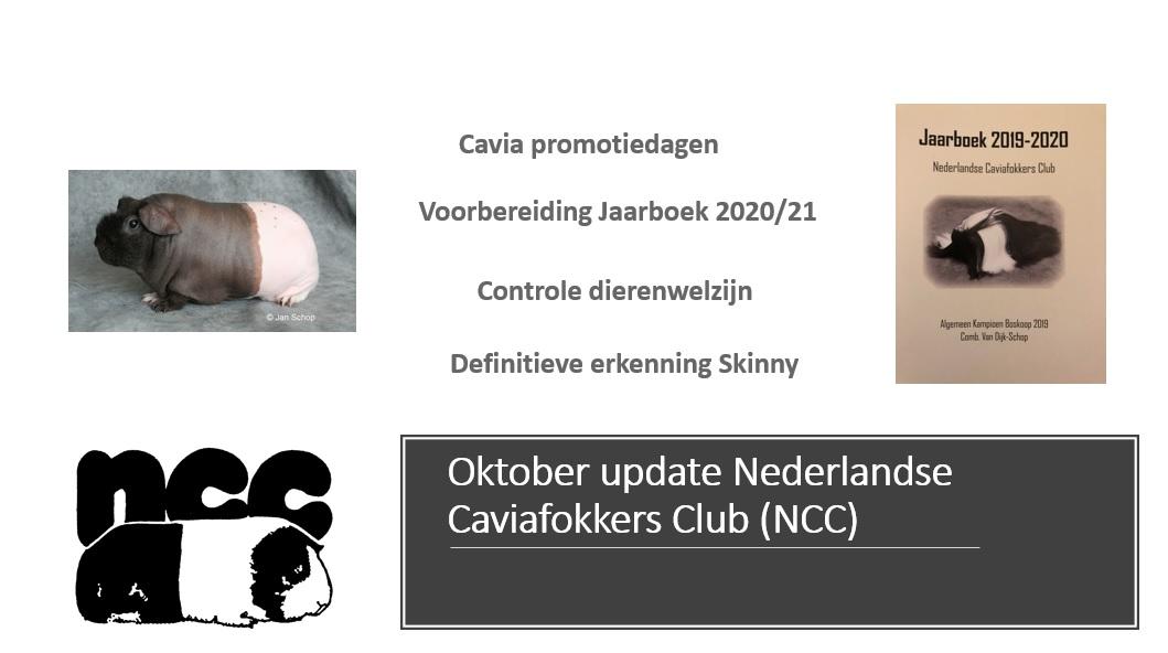 Oktober update NCC Bestuur