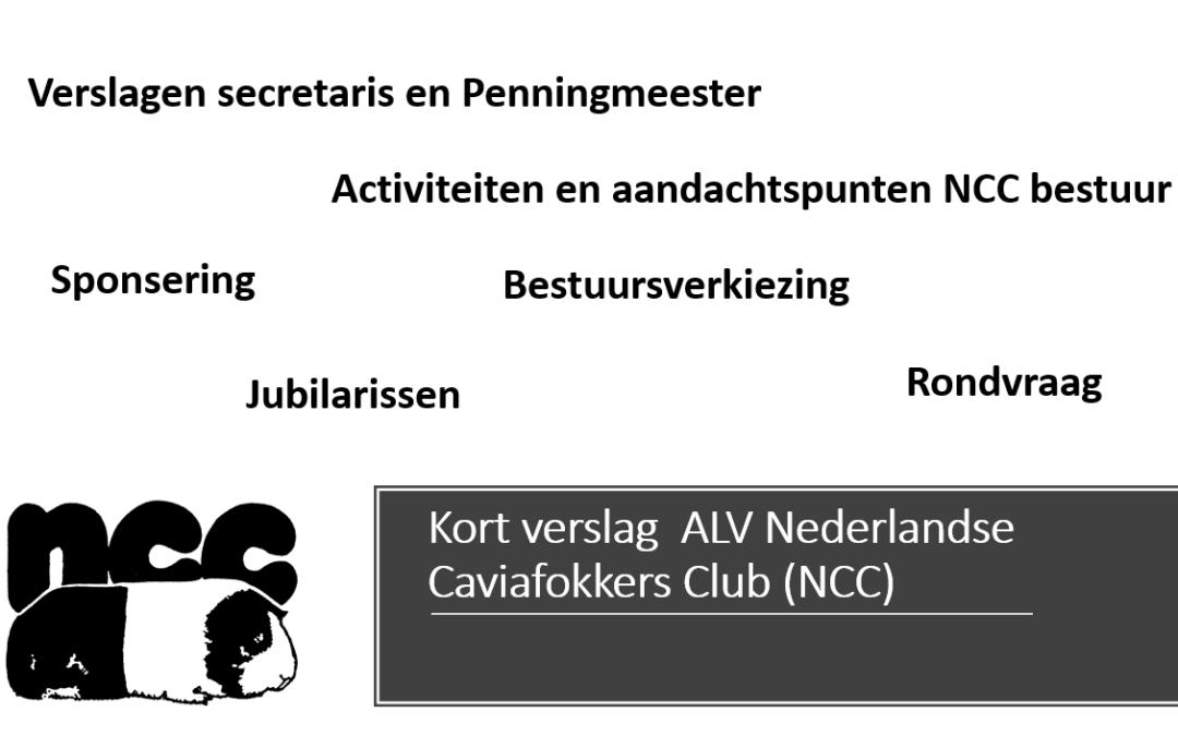 Kort overzicht Algemene Leden Vergadering (ALV)
